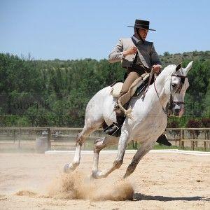 Doma Vaquera #caballos #horses