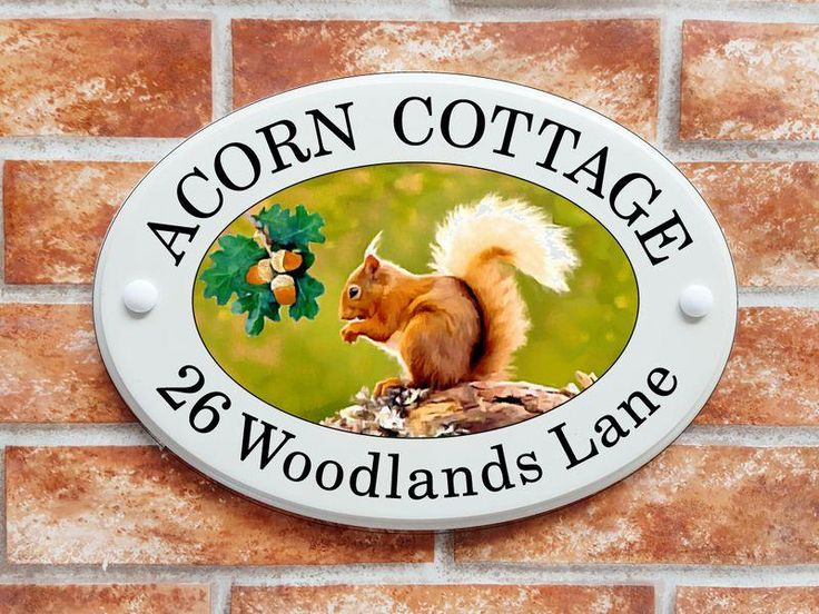 Red Squirrel printed house sign (code 001)