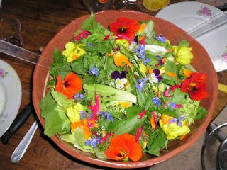 Flowers can be a source of food that helps out body.