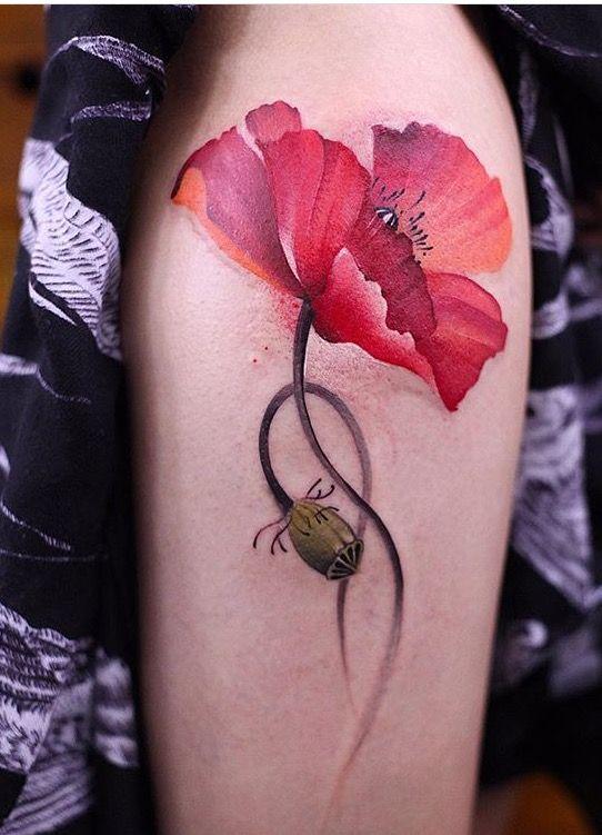 Chen Jie Newtattoo poppy flower  tattoo