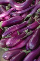 Canning eggplant under oil. The longer it sits, the better; some recipes suggest as long as three months.