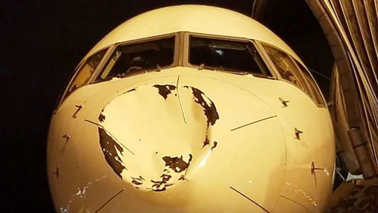 """Oklahoma City Thunder's plane has its nose crushed by apparent bird collision  