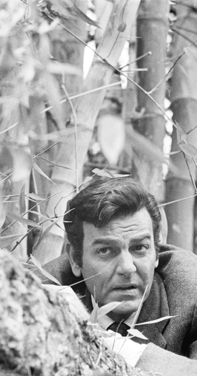 Mannix (TV Series 1967–1975) One of my favorite TV shows
