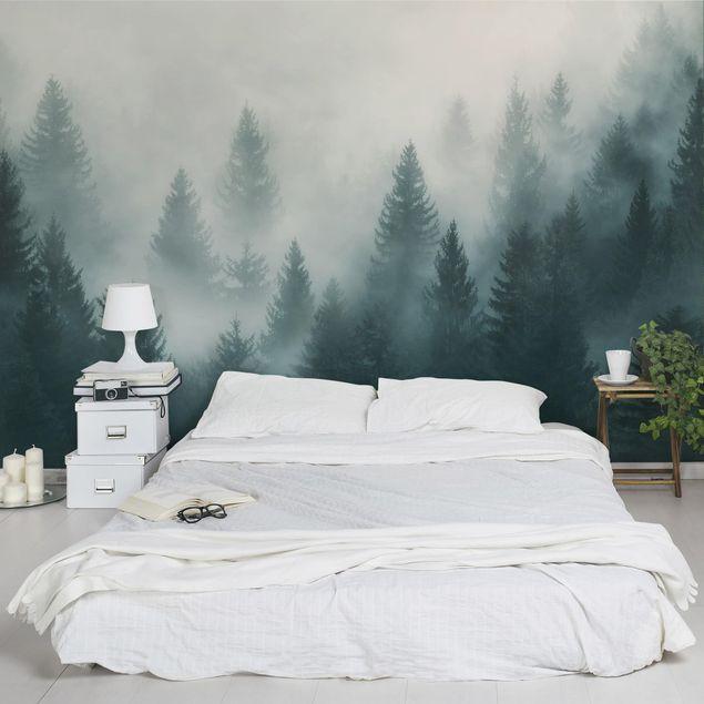 Carta da parati paesaggio - Foresta di conifere nella nebbia nel ...