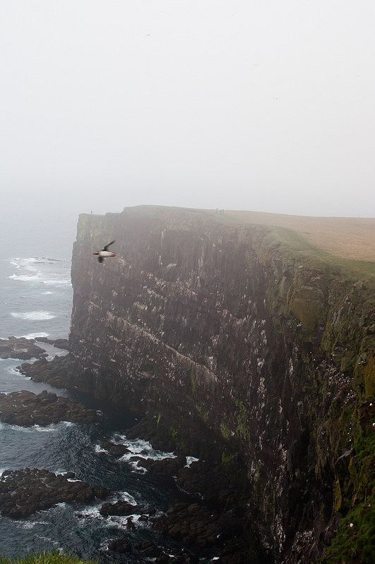 Can you see how big this cliff is? Can you zoom in and see the little people? And the flying puffin?