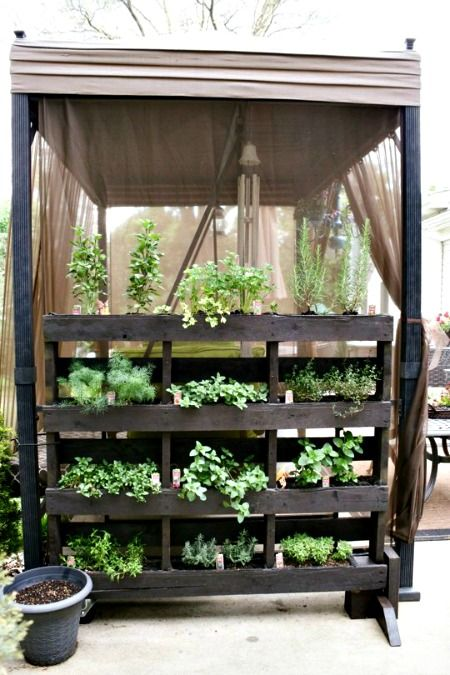 5 Easy Small Vegetable Garden Ideas to Try     http://smallgardenideas.net/5-easy-small-vegetable-garden-ideas-to-try/