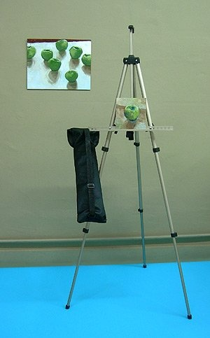 lightweight aluminum easel with travel bag 2