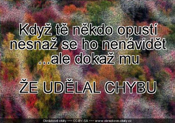 2013-03-24_21-26-25_www.obrazkove-citaty.cz