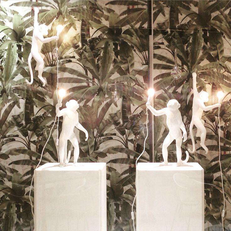 Monkeys in the jungle! #definingyourspace #seletti #robinsprong #robinspringwallpaper #monkeys #monkeysinvasion #windowdisplay #visualmerchandising