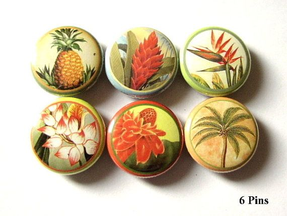 Hawaiian Flowers 1 PINBACKS PINS BADGES floral by artaltered