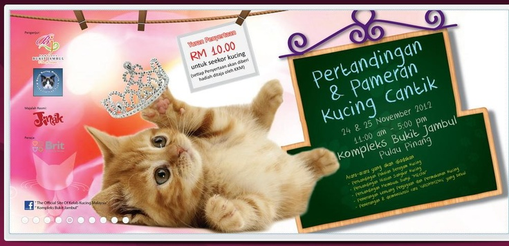 http://youtu.be/vNPag37s1Yo 24-25 Nov 2012  Pertandingan &   Pameran Kucing Cantik  Venue : Kompleks Bukit Jambul  Time : 11am - 5pm