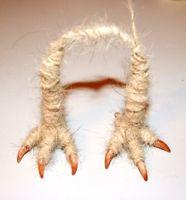 1. Сделаем проволочные лапки с коготками. Вспоминаем, что у птички четыре пальчика, три - вперед, один – назад.  2. Обматываем плотно лапки нитками до нужного размера, как по толщине лапки, так и по ее длине. Можно использовать мохер, можно ровницу. Я взяла спряденные вручную нитки из собачьей шерсти.  3. Приматываем клубок шерстяных ниток нужного размера к верхней части каркаса – заготовка туловища готова.  4. Равномерно приваливаем к заготовке туловища кардочесанную шерсть иглой звездочка.