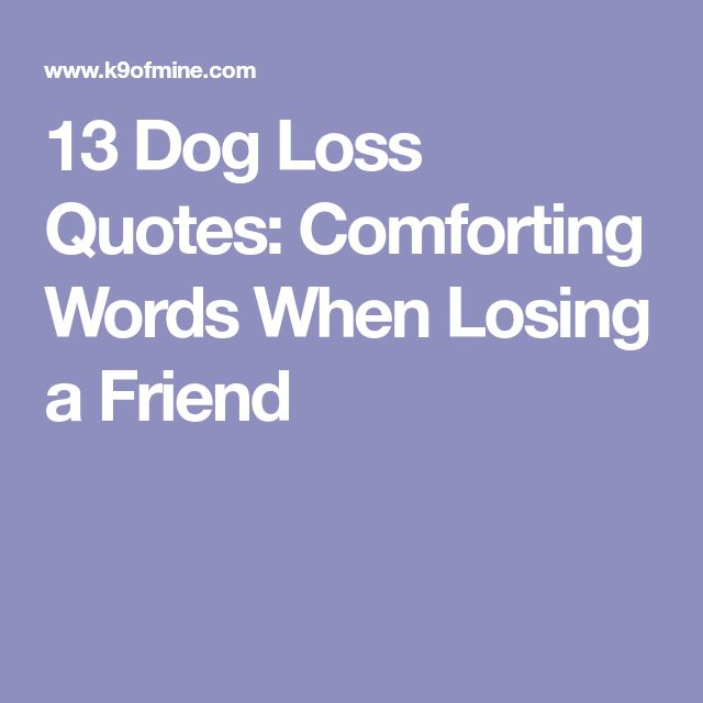 Sad I Miss You Quotes For Friends: Best 25+ Dog Loss Quotes Ideas On Pinterest