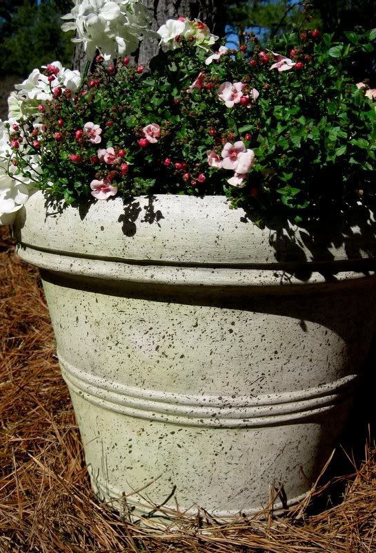 How to Faux Finish A Plastic Flower Pot | DIY Home Staging Tips