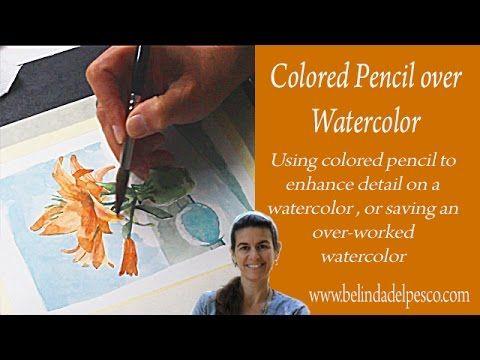 Watercolor: Tiger Lily Polka Dot (& using colored pencil on watercolors) - Belinda Del Pesco