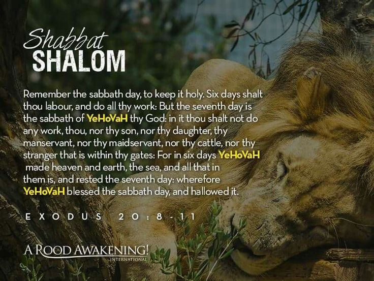 Estremamente 203 best Shabbat images on Pinterest | Shabbat shalom, Torah and  GO55