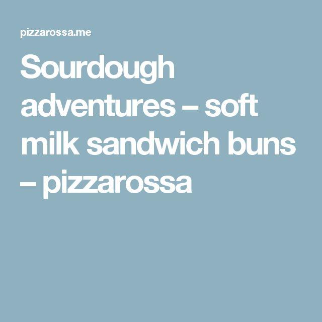 Sourdough adventures – soft milk sandwich buns – pizzarossa