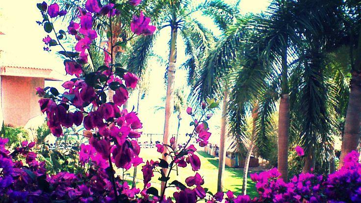 Beautiful View - Hualtuco, Mexico Photo by: Danielle Yaghdjian