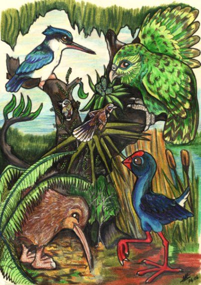 New Zealand Birds by lemurkat on DeviantArt