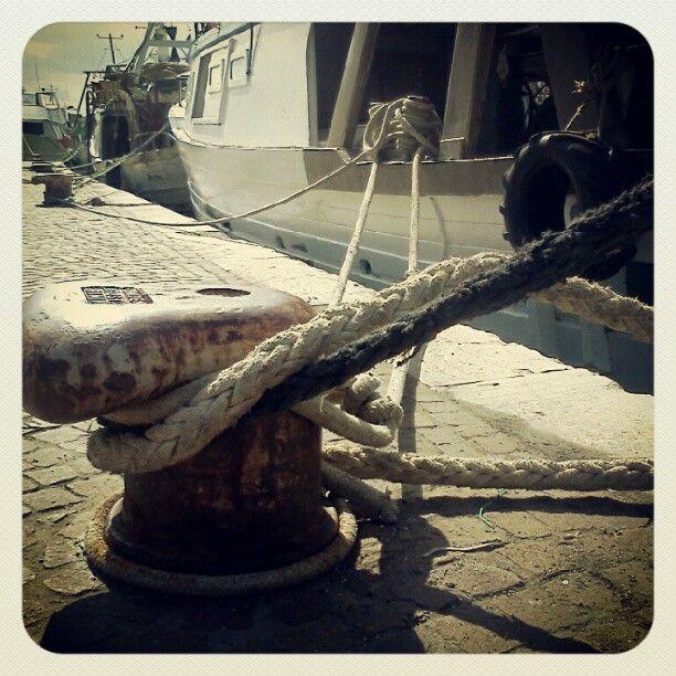 Legami indissolubili e antichi come le storie dei pescatori.    Porto di Rimini