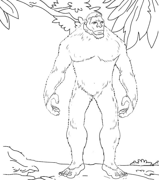 Monster Yeti Coloring Page Snowman Coloring Pages Coloring
