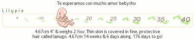 35 Semanas