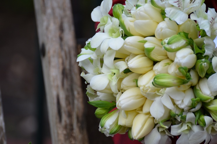White tulip bouquet with Singapore orchids and peruvian lilies