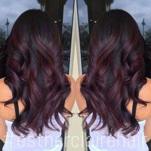 Black Burgundy Hair Color