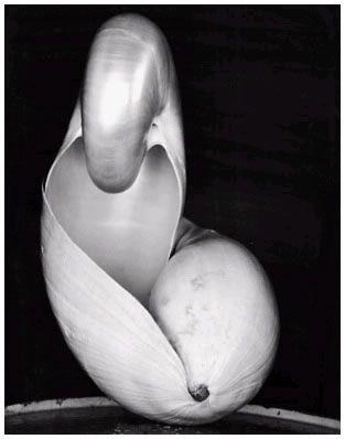 shell_1927_1s_large.jpg