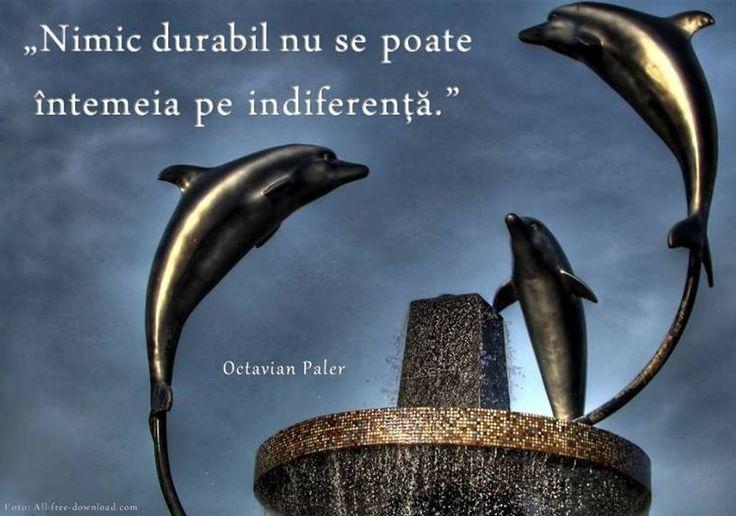 #indiferență