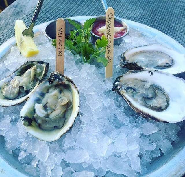 midtown oyster bar newport