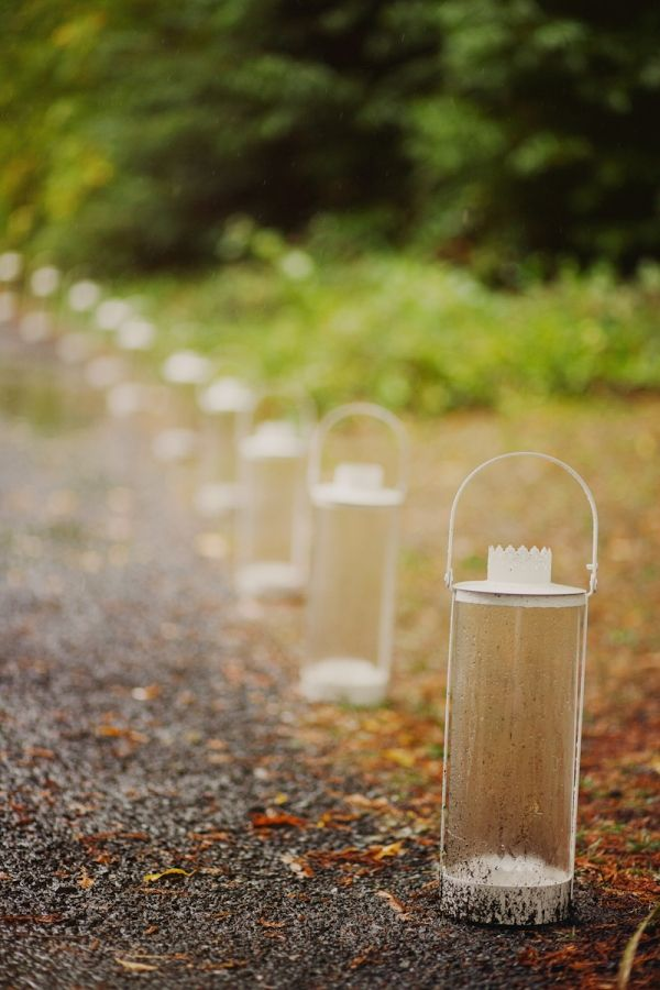 Lanterns lining forest walkway.