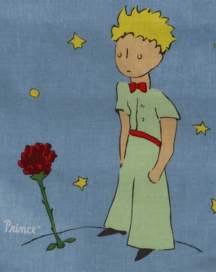»Die Zeit, die du für deine Rose verloren hast, sie macht deine Rose so wichtig.« »Die Zeit, die ich für meine Rose verloren habe...«, sagte der kleine Prinz, um es sich zu merken. »Die Menschen haben diese Wahrheit vergessen«, sagte der Fuchs. »Aber du darfst sie nicht vergessen. Du bist zeitlebens für das verantwortlich, was du dir vertraut gemacht hast. Du bist für deine Rose verantwortlich...« <3