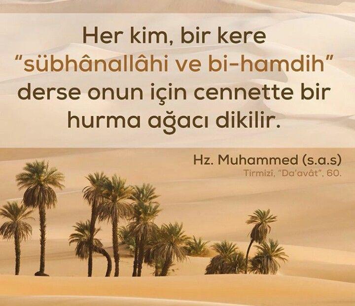 Hz.Muhammed s.a.s