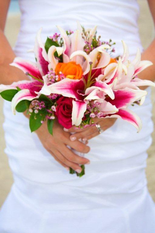 St Johns Virgin Islands Flowers