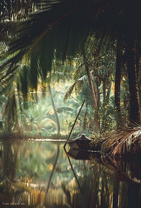 Kerala                                                                                                                                                                                 Plus
