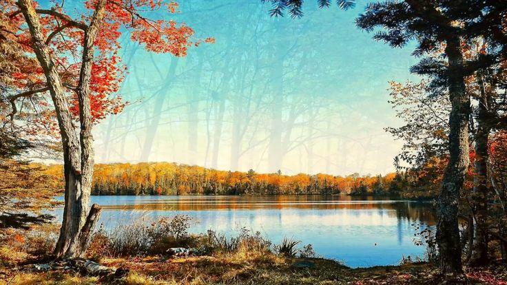 Krásná Romantická Hudba: Relaxační hudba, Klavírní hudba, Meditační Hudb...