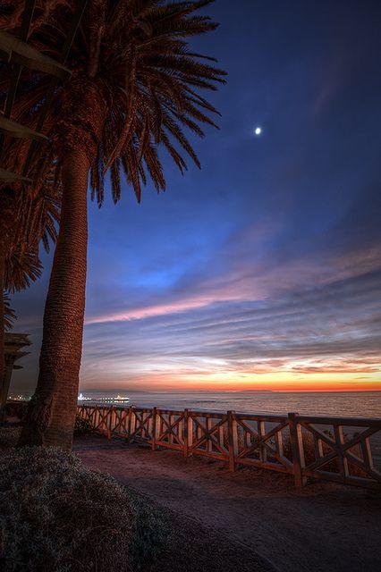 ~~Palisades Park • Santa Monica Pier, California by oldhickory49~~