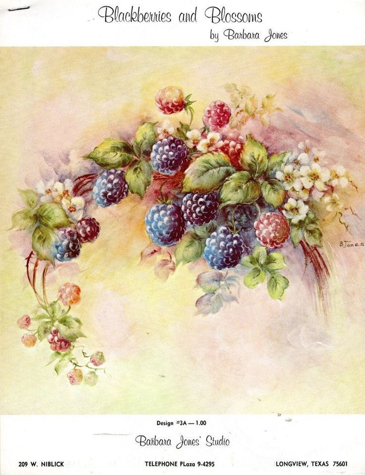Blackberries & Blossoms China Painting Study by Barbara Jones