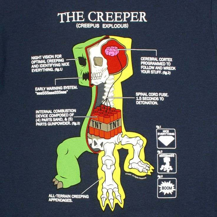 Minecraft Creeper Anatomy - Hall of Geek - La Culture Geek par Excellence