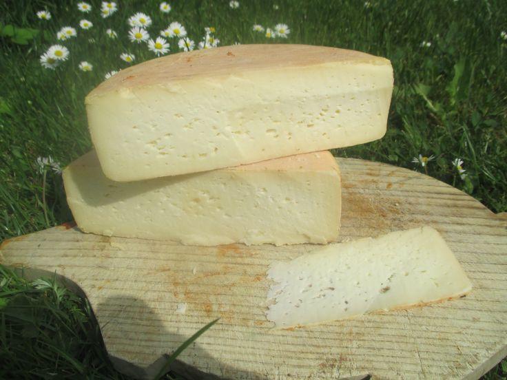 Tylžský sýr stáří 2 měsíce
