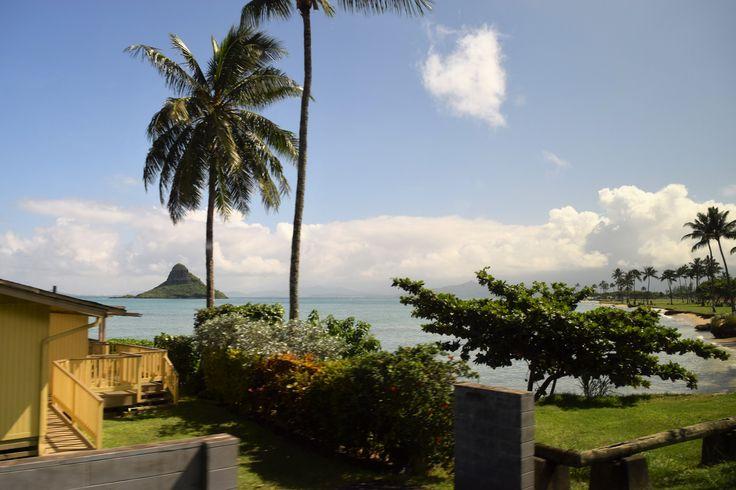 Mokoli'i Islet-Island Exploration Tour-Oahu Packages! www.aloha-hawaiian.com #Hawaii #Oahu #hawaiivacation #allinclusivehawaii #oahuallinclusive
