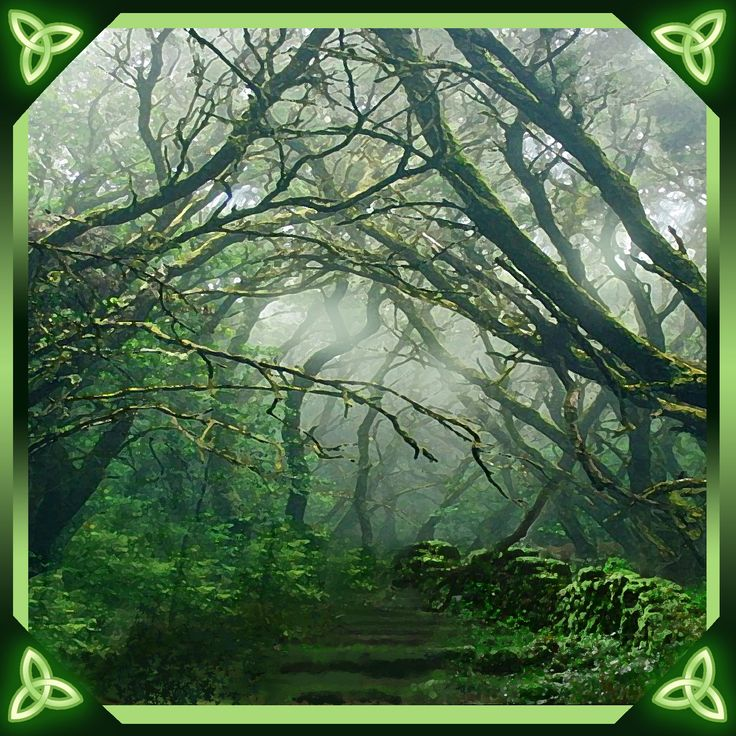 """Enchanted Path"" Pagan Wiccan Festival Greetings Card by Lila Engel. Available at Nemetona, 36 New Wynd, Montrose, Angus DD10 8RB  Tel: 01674 424005  Email: shop@nemetona.co.uk"