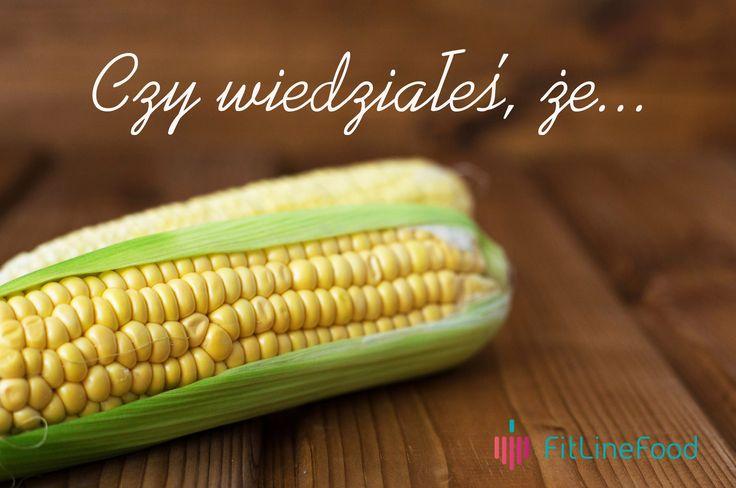 Czy wiedziałeś, że ziarna kukurydzy nie zawierają białek glutenu?  www.fitlinefood.com