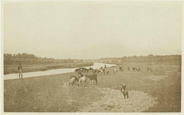 Kali Anyar, Solo 1930