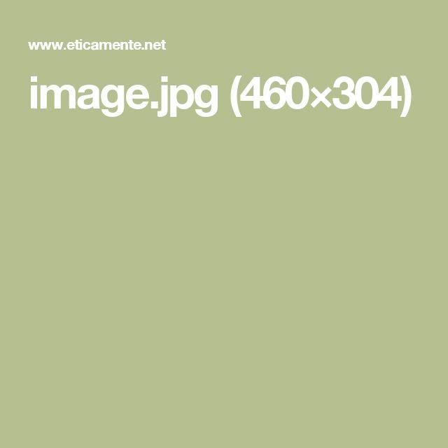image.jpg (460×304)