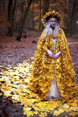 – Wonderland – The Journey Home Begins ……………Diary - Kirsty Mitchell Photography