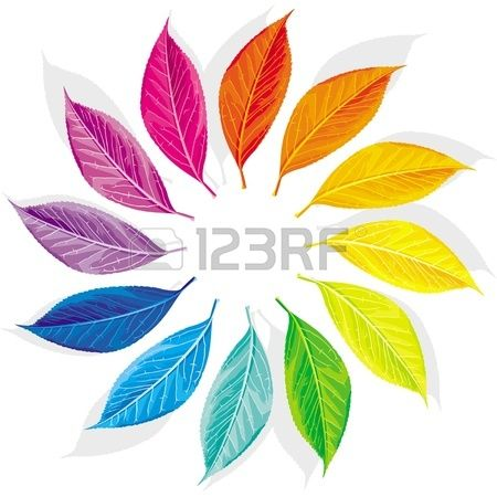 86 Best Color Wheel Ideas Images On Pinterest