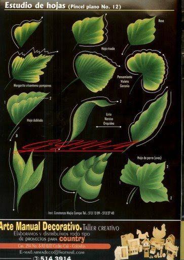 .hojas