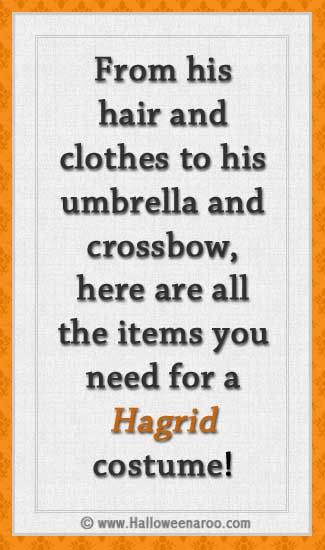 Everything you need for a Hagrid costume